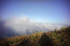 brun grässlätt på berget med mist Royaltyfri Foto
