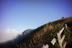 brun grässlätt på berget med mist Royaltyfria Bilder