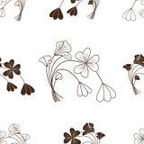 Brun grässyra på en vit bakgrund Arkivfoto