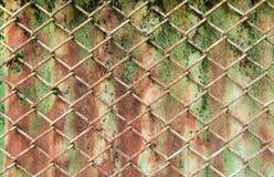 brun grön rost för bakgrund Royaltyfria Bilder