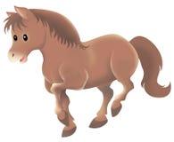 brun gullig häst Royaltyfri Fotografi