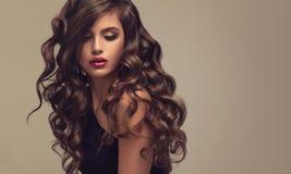Brun haired kvinna med den omfångsrika, skinande och lockiga frisyren Burrigt hår royaltyfria foton