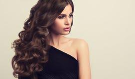 Brun haired kvinna med den omfångsrika, skinande och lockiga frisyren Burrigt hår fotografering för bildbyråer