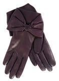 brun handske Fotografering för Bildbyråer