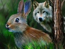 Brun hare och grå varg Arkivfoto