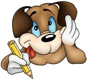 brun hundvalp Royaltyfria Foton