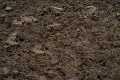 Brun jord i fält Royaltyfri Foto