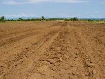 Brun jord plogade jord av ett jordbruks- fält Royaltyfri Bild