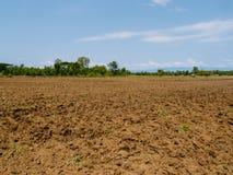 Brun jord plogade jord av ett jordbruks- fält Royaltyfri Foto