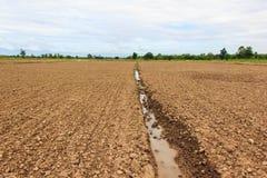 Brun jord plogade jord av ett jordbruks- fält Arkivfoton