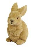 brun kanin easter Arkivfoton