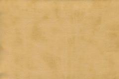 Brun kohud - läder Royaltyfri Bild