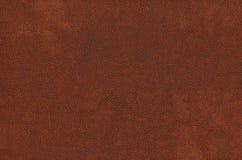 Brun kohud - läder Arkivbild