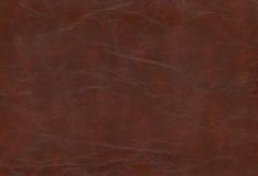 Brun kohud - läder Arkivfoto