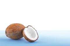 Brun kokosnöt på ett ljust ljus - blå bakgrund Ny kokosnöt som klipps i halva Läckert tropiskt tokigt mycket av näringsämnar Arkivfoto