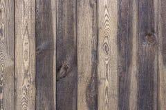 Brun korntextur för trä, bästa sikt av wood väggbakgrund för trätabell arkivbild