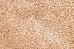 brun lädertextur Arkivfoto