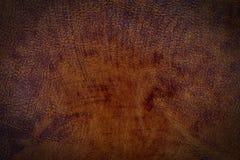 Brun lädertexturyttersida Arkivbilder