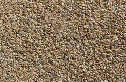 Brun liten stentexturvägg Royaltyfri Foto