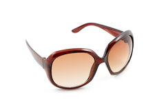 brun luxary solglasögon Royaltyfri Fotografi