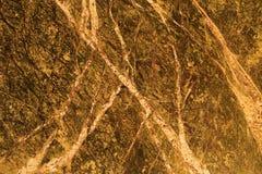 Brun marmor Arkivbild