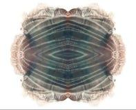 Brun och grå vattenfärgfläck Abstrakt symmetrisk grungemålning vitt Arkivfoton