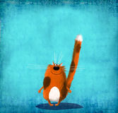 Brun prickig katt på blå bakgrund Arkivfoton