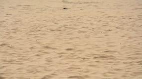 Brun sand Arkivfoto