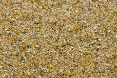 brun sand för bakgrund Royaltyfri Fotografi