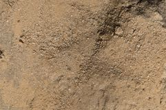 Brun sand royaltyfri foto