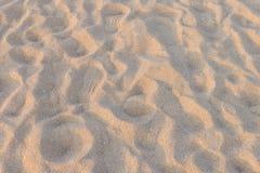 Brun sand på stranden där är spår av folk som fint går strandsand i sommarsolen royaltyfri fotografi