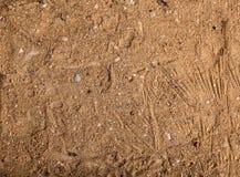 Brun sandbakgrund Royaltyfria Foton