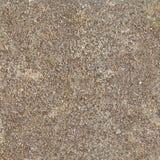 Brun sandstentextur, naturlig sten, konglomerat marmor Royaltyfri Bild