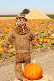 brun scarecrow Arkivfoto