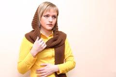 brun scarf Arkivfoton