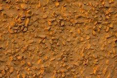Brun stenvägg royaltyfria bilder