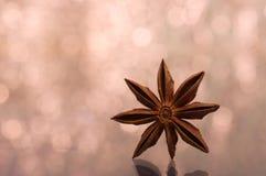 Brun stjärnaanis, östlig asiatisk krydda med bokehbakgrund Royaltyfria Foton