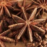 Brun stjärnaanis, asiatisk krydda mot brun bakgrund Arkivbild