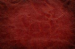 brun textur för bakgrund Royaltyfri Foto