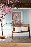Brun träbänk med kudden nära de körsbärsröda blomningarna Arkivbild