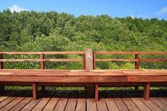 Brun träbro i naturoutdoo för grön mangrove och för blå himmel Arkivbilder