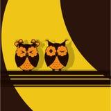 Brun uggla för två apelsin Arkivfoto
