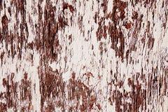 Brun wood hintergrund Arkivbilder