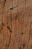 Brun Wood linje texturbakgrund Arkivfoton