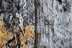 Brun wood textur på bakgrund Royaltyfria Foton