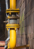 brun yellow för vägg för vattenkrangasrør Royaltyfria Foton