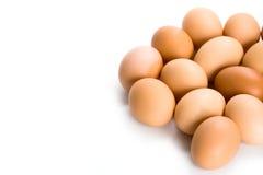 bruna ägg Arkivbild
