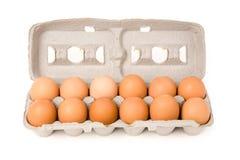 bruna ägg Royaltyfria Bilder