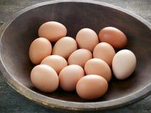 bruna ägg Royaltyfri Fotografi