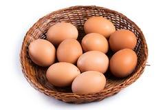 bruna ägg för korg Arkivfoto